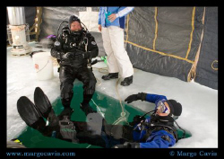 Ice diving in Minnesota (The ice is actually 2 feet thick... by Margo Cavis 